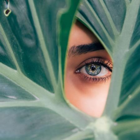 Womans eye looking through gap within a leaf